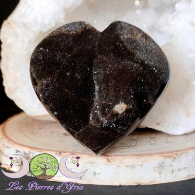 Coeur Septaria sauvage #3