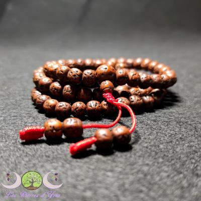 Mala Rudraksha - 108 perles