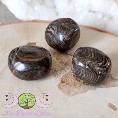 Stromatolite [pierre roulée]