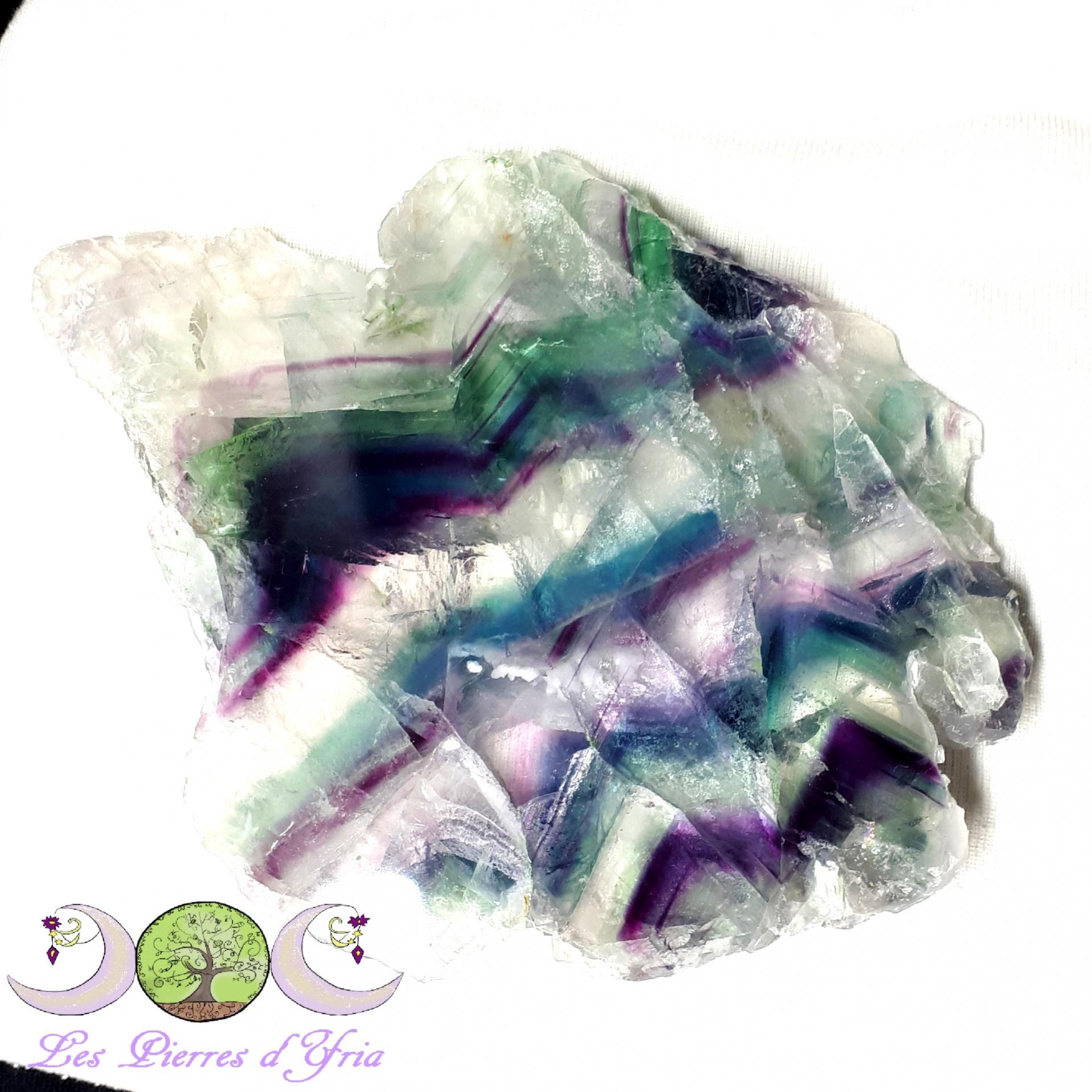 Plaque fluo 2 2 gf